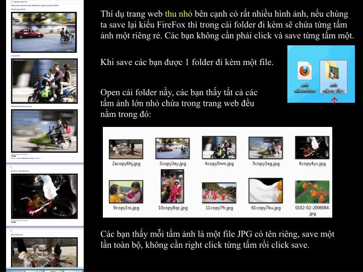 Thí dụ trang web