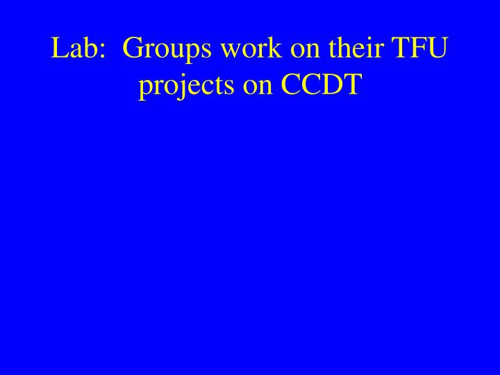 Lab:  Groups work on their TFU projects on CCDT
