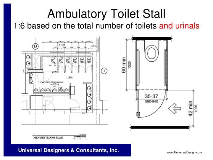 Ambulatory Toilet Stall