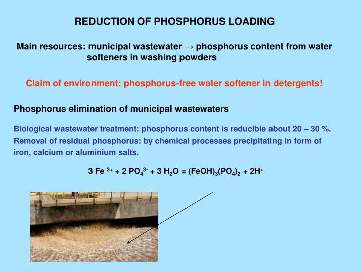 REDUCTION OF PHOSPHORUS LOADING