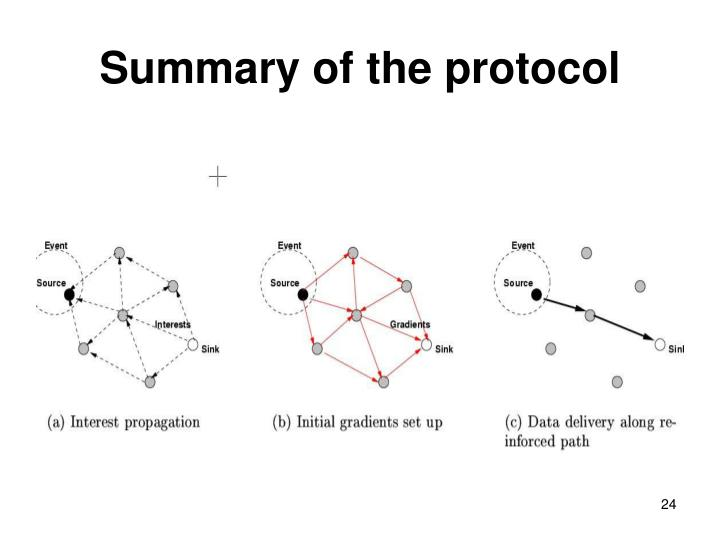 Summary of the protocol