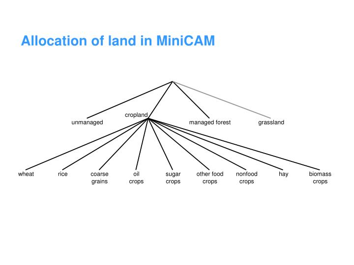 Allocation of land in MiniCAM