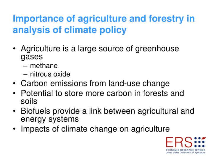 Importance of agriculture and forestry in analysis of climate policy