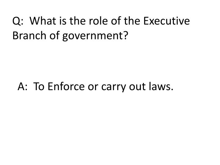 Q:  What is the role of the Executive