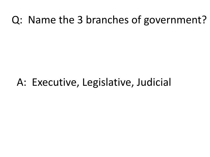 Q:  Name the 3 branches of government?
