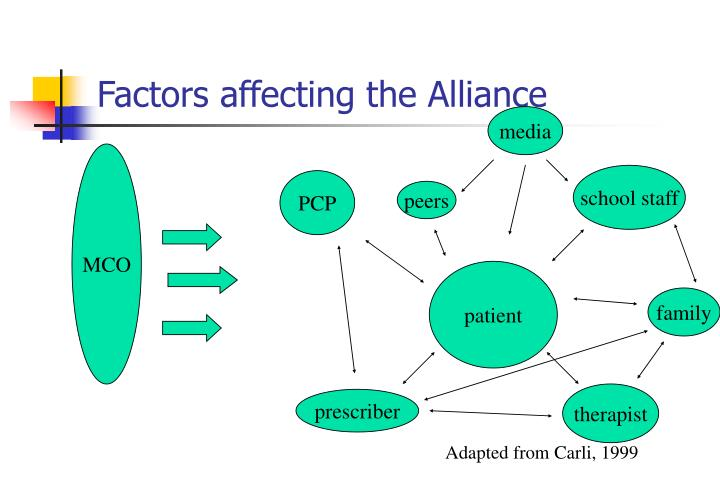 Factors affecting the Alliance