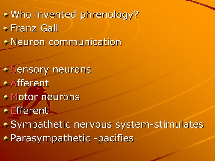 Who invented phrenology?