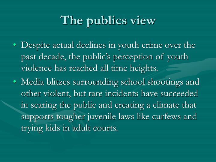 The publics view