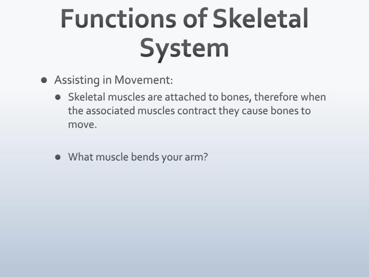 Functions of Skeletal System
