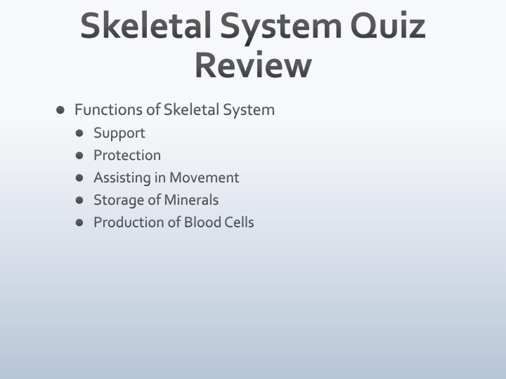 Skeletal System Quiz Review