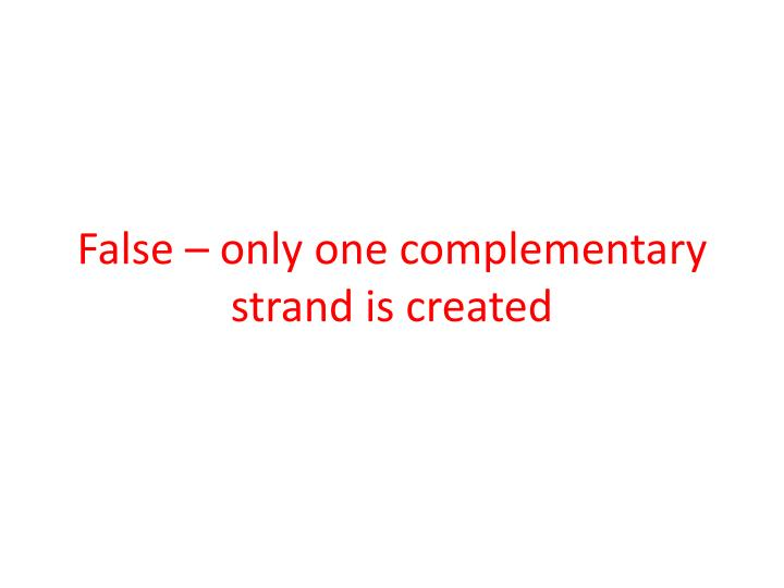 False – only one complementary strand is created