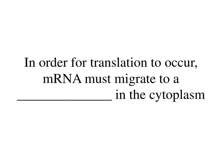 In order for translation to occur, mRNA must migrate to a ______________ in the cytoplasm