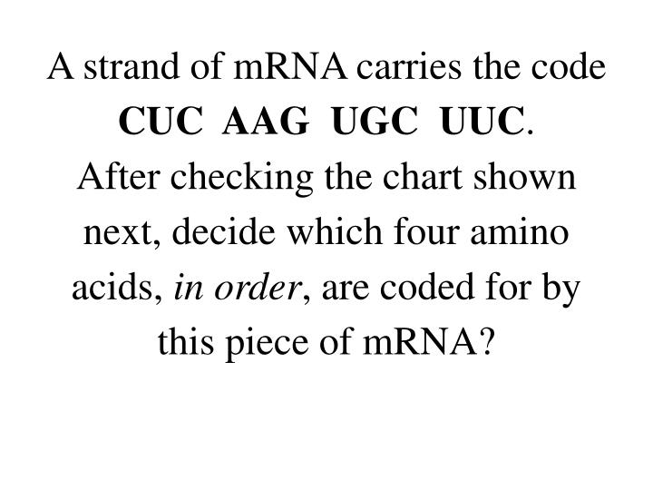 A strand of mRNA carries the code