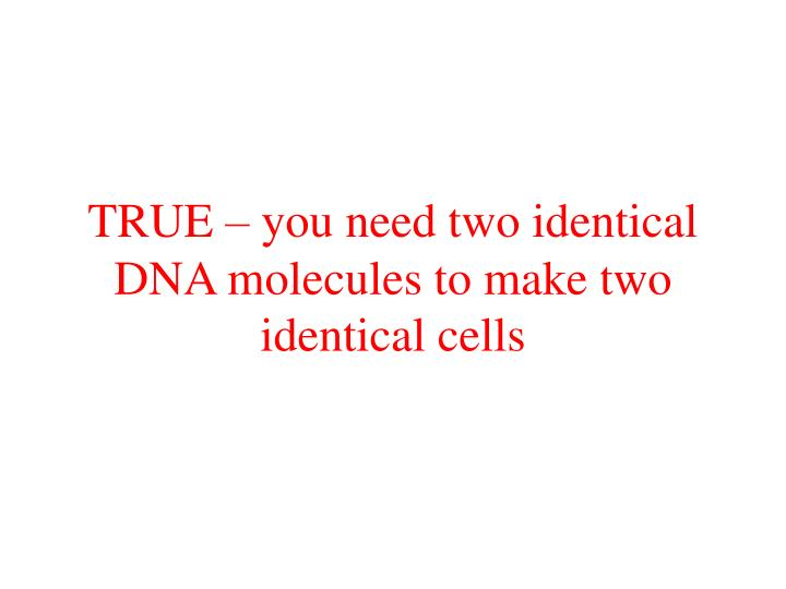 TRUE – you need two identical DNA molecules to make two identical cells
