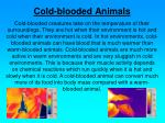 cold blooded animals