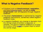 what is negative feedback