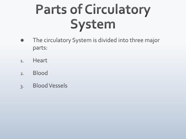 Parts of Circulatory System
