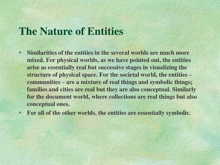 The Nature of Entities