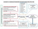university of aberdeen programme advisory board pab structure