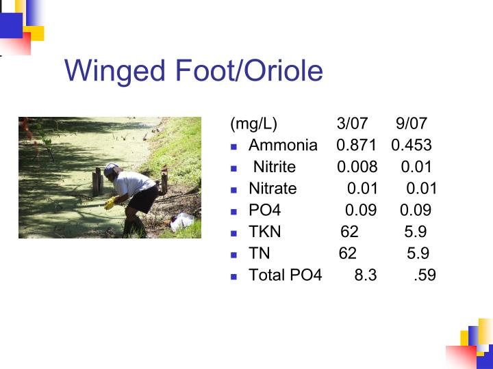 Winged Foot/Oriole