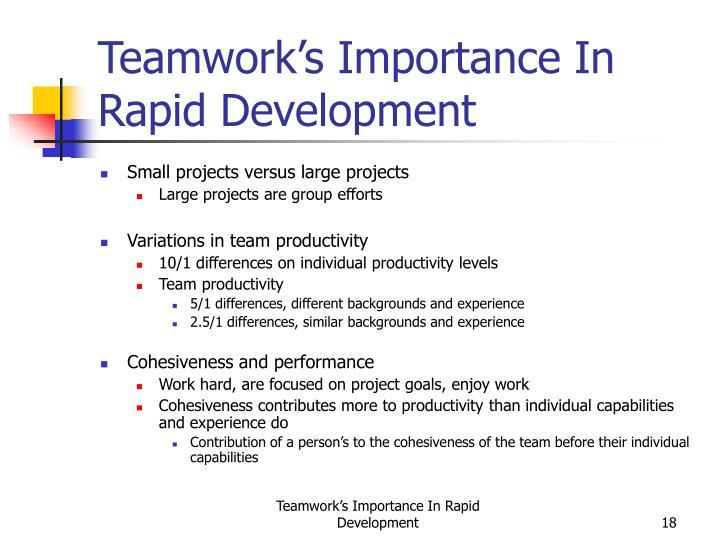 Teamwork's Importance In Rapid Development