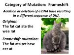 category of mutation frameshift