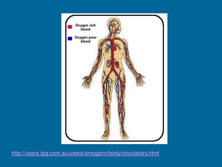 http://users.tpg.com.au/users/amcgann/body/circulatory.html