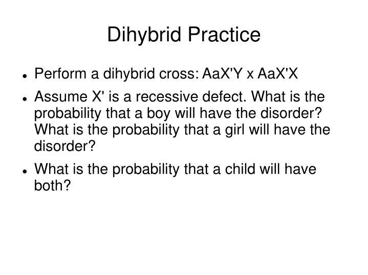 Dihybrid Practice