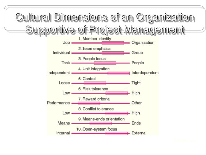 Cultural Dimensions of an Organization