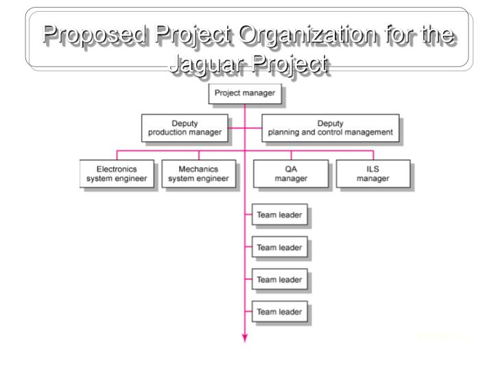 Proposed Project Organization for the Jaguar Project
