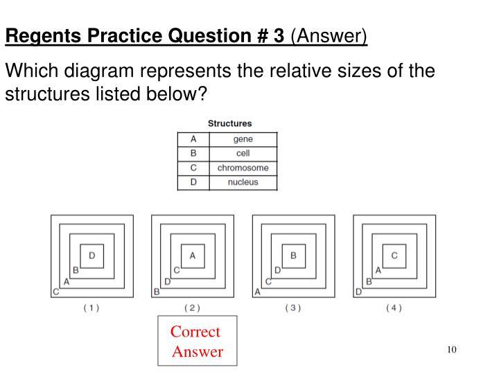 Regents Practice Question # 3
