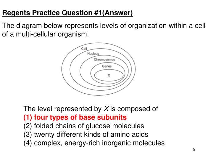 Regents Practice Question #1(Answer)