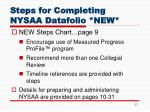 steps for completing nysaa datafolio new