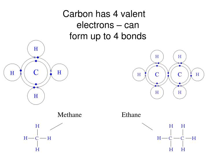 Carbon has 4 valent electrons – can form up to 4 bonds