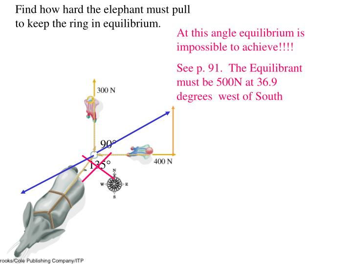 Find how hard the elephant must pull to keep the ring in equilibrium.