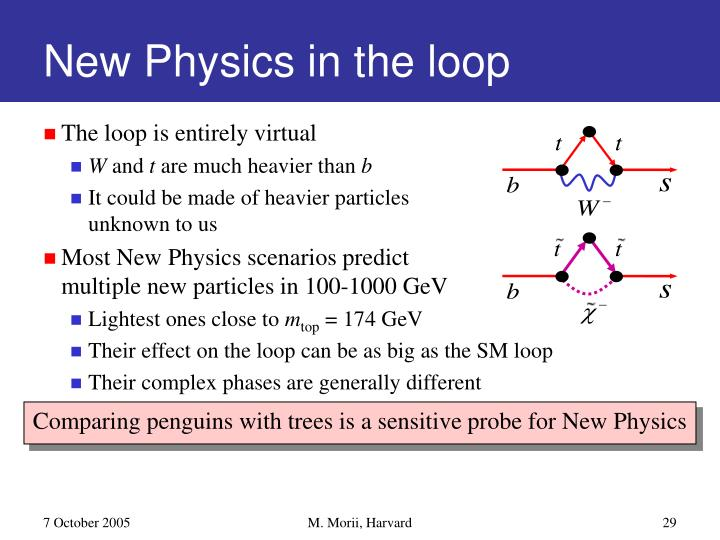 New Physics in the loop