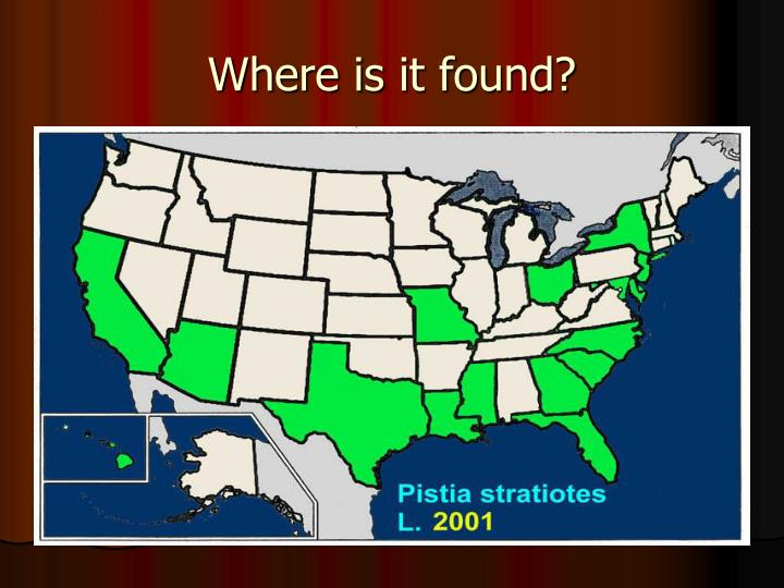 Where is it found?