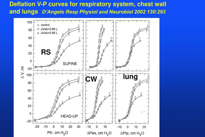 Deflation V-P curves for respiratory system, chest wall