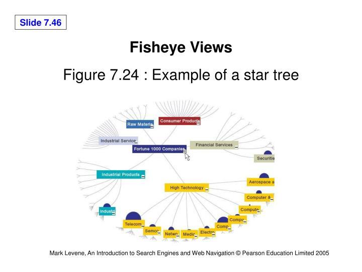 Fisheye Views