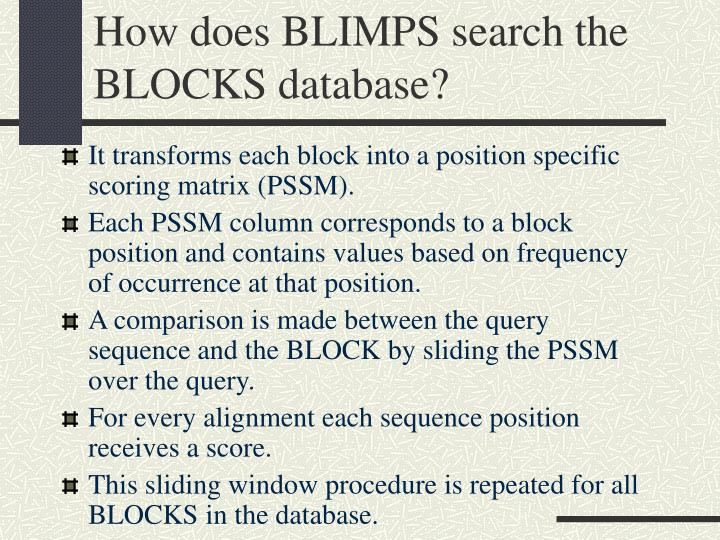 How does BLIMPS search the BLOCKS database?