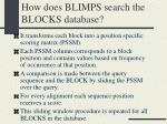 how does blimps search the blocks database