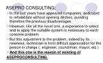 asepro consulting4