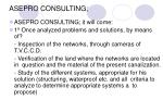 asepro consulting7