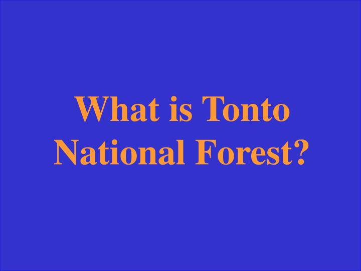 What is Tonto National Forest?