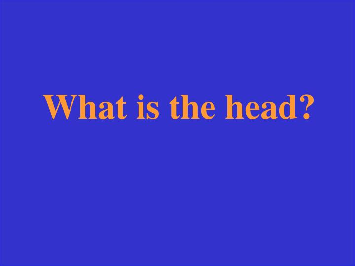 What is the head?