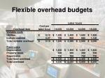 flexible overhead budgets1