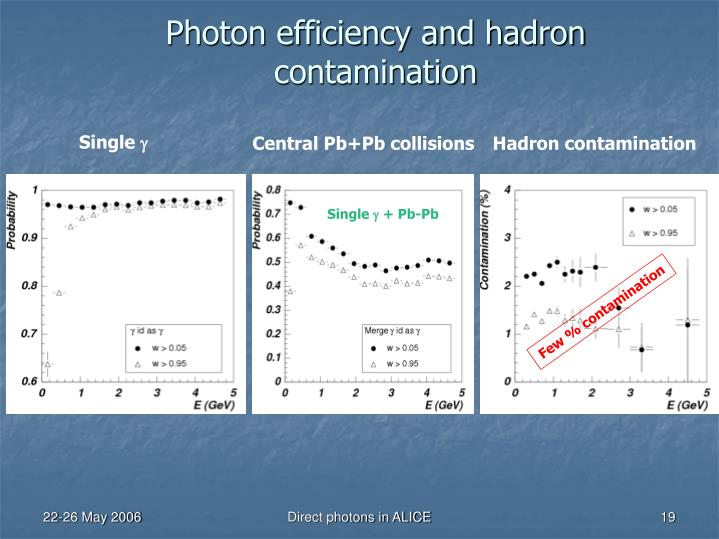 Photon efficiency and hadron contamination