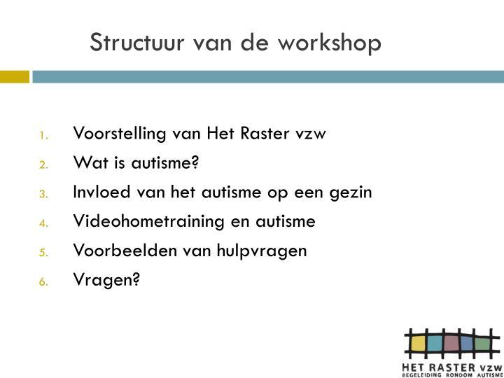 Structuur van de workshop