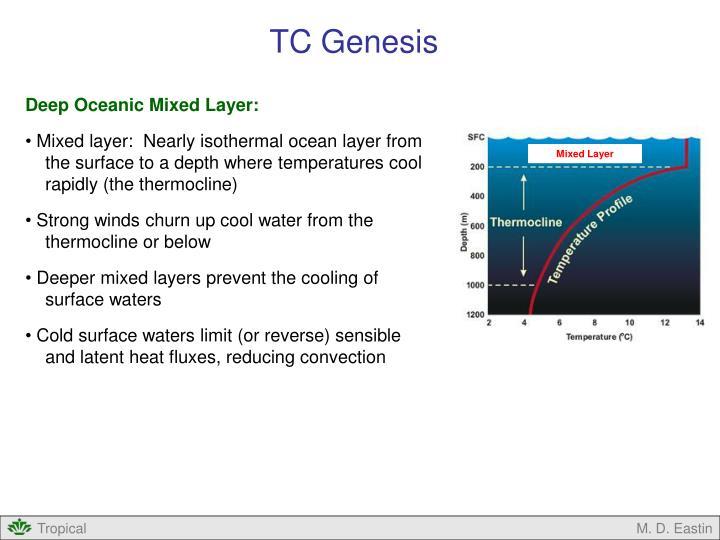 TC Genesis