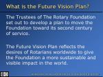 what is the future vision plan
